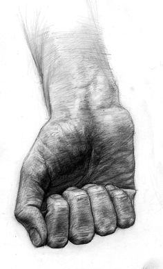 Drawing hands, drawings of hands, realistic drawings, amazing drawings, bod Hand Drawing Reference, Drawing Hands, Body Drawing, Life Drawing, Figure Drawing, Art Reference, Anatomy Sketches, Anatomy Drawing, Anatomy Art