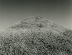Mason Bay: A Natural Succession is a group of 16 photographs of the subtly humanised and isolated dune landscape of Mason Bay, Stewart Island. All images are selenium-toned silver gelatin prints, x 21 cm, from large-format negatives.