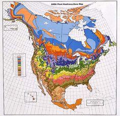 袁晓辉 Rita : 北美植物耐寒分區表Plant Zone Map