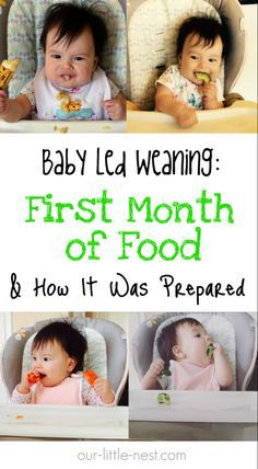 Baby Led Weaning: First Month of Food & How It Was Prepared » Our Little Nest Baby Led Weaning First Foods, Baby First Foods, First Baby, Baby Led Weaning Recipes 6 Months, Baby Lef Weaning, The Babys, Baby Snacks, Baby Muffins, Fingerfood Baby