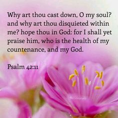 Psalm 42:11 KJV