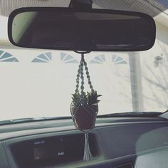I am so in love with my little macrame hanging succulent thingie. Not sure what to calm it Do you have something meaningful hanging from your rear view mirror? Car Mirror, Rear View Mirror, Hanging Succulents, Car Stuff, Tis The Season, Car Accessories, Mtv, Crib, Dream Cars