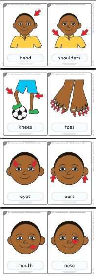 head shoulders knees and toes worksheet - Pesquisa Google