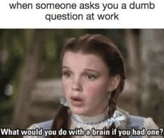 When someone asks you a dumb question at work - dumb coworkers meme - dorothy meme wizard of oz