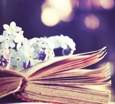books, flowers, light, photography, pretty - image on .