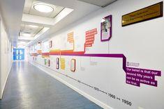 Timeline of achievement at iMBE, University of Leeds
