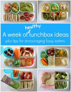 A Week of Healthy Lunch Ideas for Kids - One Perfect Day