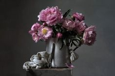 Peony in Color