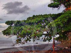 Punta Burica. Río Coco. Reserva indígena Guaymi. Costa Rica.