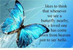 Grandpa and I like to think that whenever we see a butterfly nearby, that its KK and she has come down from Heaven just to say hello.We love you Kayla and miss you so much --db Butterfly Quotes, Butterfly Art, Butterfly Kisses, Butterfly Pictures, Blue Butterfly Meaning, Butterfly Cocoon, Butterfly Tattoo Meaning, Simple Butterfly, Morpho Butterfly