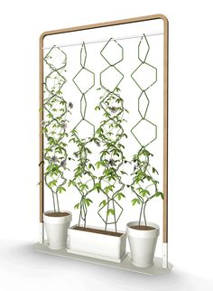 Anno by Frederic Malphettes - a vertical garden from plants climbing over trellises ... the trellises can be suspended from a frame as per this photo, hung from angled wall hooks or attached to chains from above ... a simple design for various situations that creates an eye-catching display!