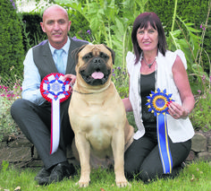 Top #dogs 2014