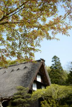 Japanese old country house