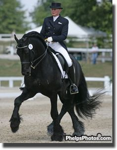 Friesian have long made a mark in the World Dressage ring, now they are doing it here in the US