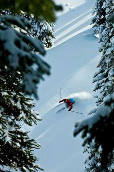 I keep having skiing dreams. I miss it so.