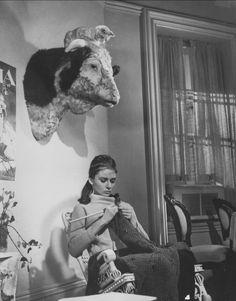 audrey hepburn knitting in breakfast at tiffany's. Audrey Hepburn, Art Du Fil, Cat Perch, Holly Golightly, Knit Art, Matou, Vintage Knitting, Vintage Crochet, Belle Photo