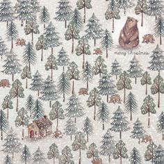 alice wong- bear in forest