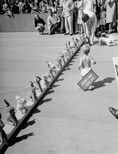 Baby racing was the greatest sport of the 20th century