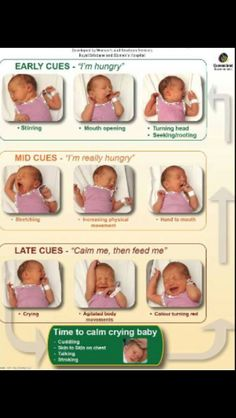 Baby hunger cues - breastfeeding breast feeding nursing
