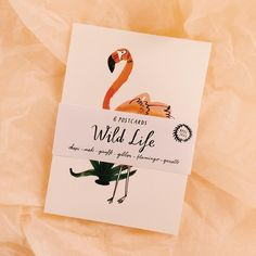 The Wild Life postcards from my shop  there are still a couple of sets available! #bodiljane #bodiljaneshop #tictail #wildlife by bodiljane