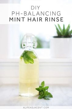 Learn how to make a pH-balancing mint hair rinse with apple cider vinegar. This cooling, invigorating hair rinse helps boost hair growth and combat scalp ailments such as dandruff and psoriasis. It also helps with the symptoms of pH-imbalanced hair, which Baking Soda Dry Shampoo, Baking Soda For Dandruff, Baking Soda For Hair, Baking Soda Water, Baking Soda Vinegar, Baking Soda Uses, Cider Vinegar, Honey Shampoo, Baby Shampoo