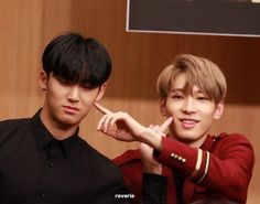 Meanie couple. Mingyu and Wonwoo