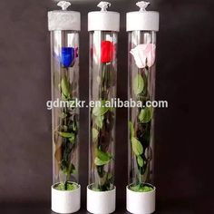 Check out this product on Alibaba.com App:Custom design printed paper round box for single rose flower packaging acrylic https://m.alibaba.com/iQ7FJb