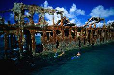 Bimini, Bahama Islands ... great snorkeling and conch.