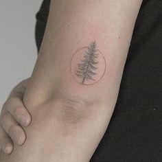 New pine tree tattoo arm awesome Ideas Birch Tree Tattoos, Olive Tree Tattoos, Willow Tree Tattoos, Nature Tattoos, Body Art Tattoos, New Tattoos, Cool Tattoos, Tatoos, Tree Tattoo Arm