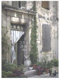 フランスで出会った猫たち レイチェル・マッケナ, http://www.amazon.co.jp/dp/476612250X/ref=cm_sw_r_pi_dp_v8JKrb1C8A6HS