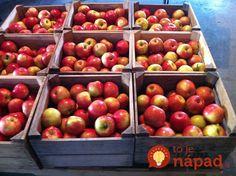 Tento kameň by mal mať doma každý: Neuveríte, akú úžasnú službu pre vás bude robiť celé roky! Bude, Dom, Apple, Fruit, Garden, Apple Fruit, Garten, Lawn And Garden, Gardens