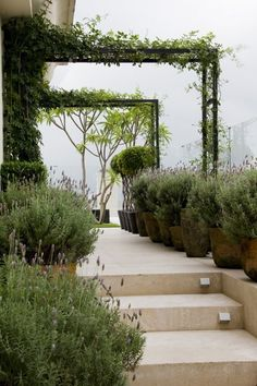 .one day - arbors over a walk way or attached to the house/studio or an outbuilding :)