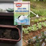 Gardening Tips, Chemistry