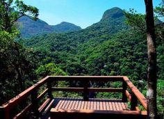 Passeio leva a mirante e museu na Floresta da Tijuca