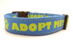 Adopt Me Blue Dog Collar  1 Wide  Medium & by MuttsandMittens, $18.00