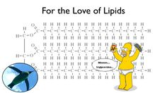 We love lipids - because fats carry flavor! But what are lipids and are they all the same? What about saturated vs. unsaturated fatty acids - just WHAT are t. Teaching Chemistry, Biology Teacher, Ap Biology, Cell Biology, Science Resources, Science Education, Nutrition Education, Teaching Resources, Science Cartoons