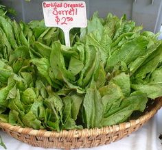 Several varieties of sorrel are available in Seattle farmers markets during spring and fall, including garden sorrel (shown here) and wood sorrel. Wood sorrel looks like large four-leaf clover. Green Veggies, Raw Vegetables, Sorrel Recipe, Summer Recipes, Easy Recipes, Sorrel Soup, Wood Sorrel, Tartar Sauce, Healthy Shopping