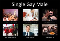 What does single Gay Male? :D - Funny Gay Humor
