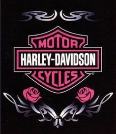 Harley Davidson pretty in pink...I want to learn how to ride a motorcycle!