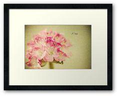 """Textured Flower"" by Thierry Wojtczak. Available for sale at http://www.redbubble.com/people/thierrywojtczak/shop"