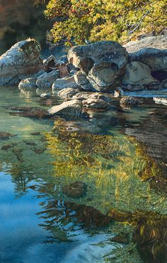 """""""Dawntide"""" watercolor by artist Carol Evans. Beautifully detailed rocks reflect down onto the transparent water below. Lovley light on the trees. Watercolor Landscape, Landscape Art, Landscape Paintings, Watercolor Art, Watercolour Paintings, Watercolours, Landscape Rocks, Landscape Fabric, Beautiful Paintings"""