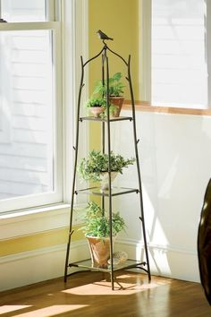 7 Outstanding Plant Stands! --> http://www.hgtvgardens.com/photos/decorating-photos/7-outstanding-plant-stands?soc=pinterest