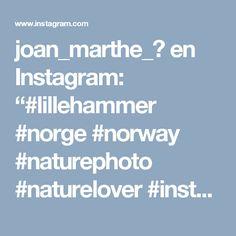"joan_marthe_♡ en Instagram: ""#lillehammer #norge #norway #naturephoto #naturelover #instaphoto #myphoto #mygarden #animal #forest #snow #home #mojogrod #natura #śnieg…"" • Instagram"