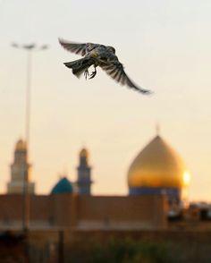 مرقد مسلم ابن عقيل عليه السلام