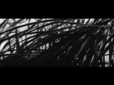 """Onibaba """"reeds"""" - Hikaru Hayashi"""