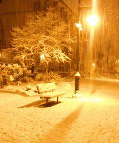 stormidae: first snow: night shots