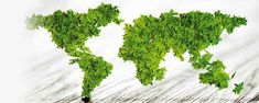 We take a look at food waste statistics around the world Alternative Energie, Food Waste, Gadgets, Hearth, Sustainability, Environment, Blog, Image, Nissan