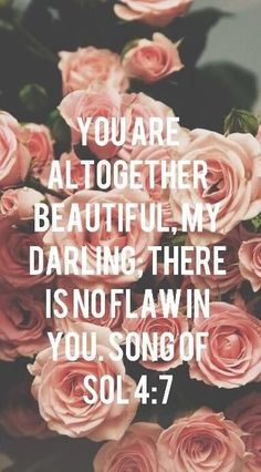"""You are all together beautiful; there is no flaw in you."""