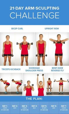 Everyone has their own reasons for wanting strong, defined arms; we're here to help. After following this 21-day arm plan, not only will your arms look toned — you'll also be stronger. First thing's first: don't worry if you've never lifted a dumbbell in your life. This arm challenge was designed with everyone in mind …