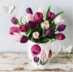 Waiting for Waitrose tulips in an Emma Bridgewater Tulips jug!